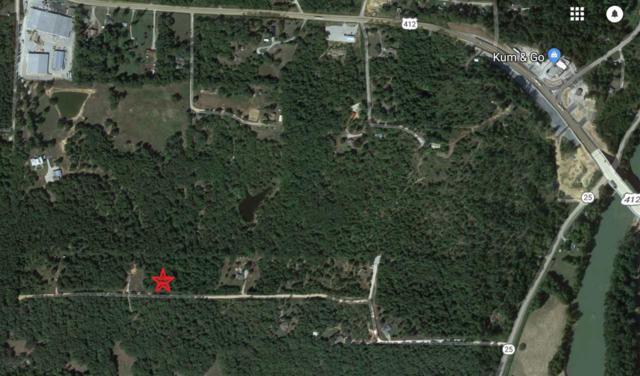 3.3 Acres Cr 296, Black Rock, AR 72415 (MLS #10076687) :: Halsey Thrasher Harpole Real Estate Group