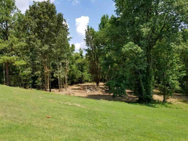 Lot 17C Ridge Lake Cove, Jonesboro, AR 72404 (MLS #10077074) :: Halsey Thrasher Harpole Real Estate Group