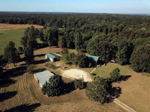 100 Greene 710 Rd, Paragould, AR 72450 (MLS #10077237) :: Halsey Thrasher Harpole Real Estate Group