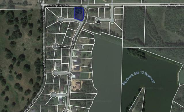 Lot 58 Lakeside Cove, Jonesboro, AR 72404 (MLS #10077377) :: Halsey Thrasher Harpole Real Estate Group