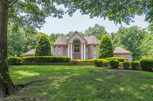 2913 Patricia Cove, Jonesboro, AR 72404 (MLS #10077612) :: Halsey Thrasher Harpole Real Estate Group