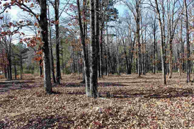 1614 Horne Drive, Jonesboro, AR 72404 (MLS #10078386) :: Halsey Thrasher Harpole Real Estate Group