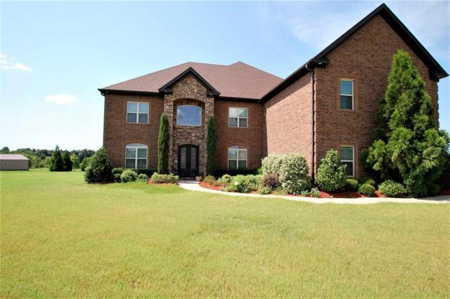 370 Cr 794, Jonesboro, AR 72401 (MLS #10078630) :: Halsey Thrasher Harpole Real Estate Group