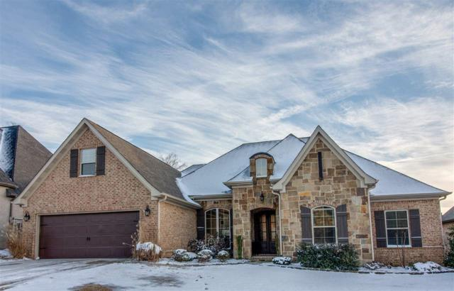 4268 Annadale Circle, Jonesboro, AR 72404 (MLS #10078683) :: Halsey Thrasher Harpole Real Estate Group