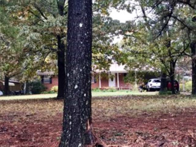 564 Cr 761, Brookland, AR 72417 (MLS #10079033) :: Halsey Thrasher Harpole Real Estate Group