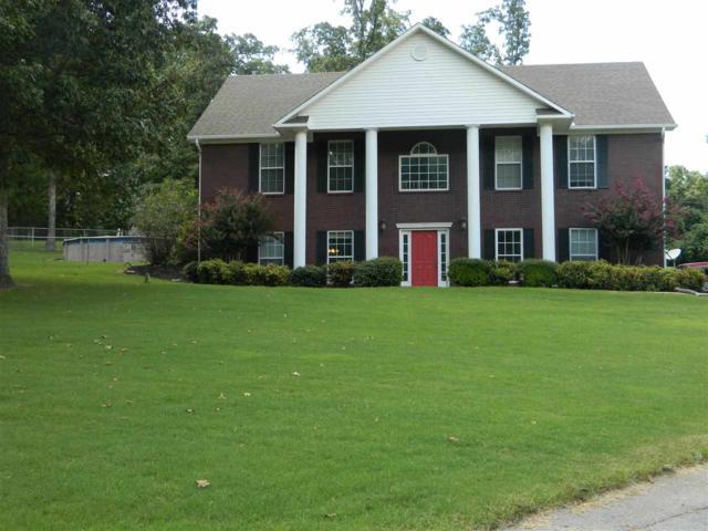 97 Cr 130, Bono, AR 72416 (MLS #10079336) :: Halsey Thrasher Harpole Real Estate Group