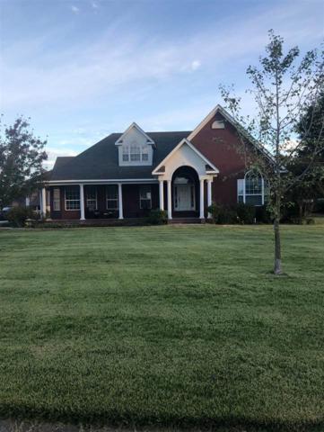 102 Savannah Circle, Walnut Ridge, AR 72476 (MLS #10079727) :: Halsey Thrasher Harpole Real Estate Group