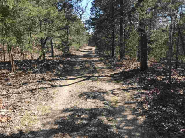 80 Acres Baker's Ford Rd., Mammoth Springs, AR 72459 (MLS #10079900) :: Halsey Thrasher Harpole Real Estate Group