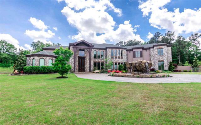 3894 Plantation Estates Drive, Jonesboro, AR 72404 (MLS #10080544) :: Halsey Thrasher Harpole Real Estate Group