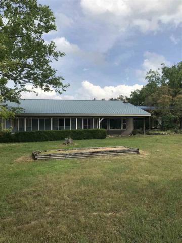 395 Norfork Lake Drive, Henderson, AR 72544 (MLS #10080773) :: Halsey Thrasher Harpole Real Estate Group