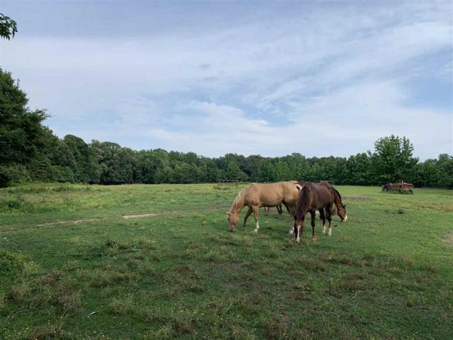 18.45 Acres Oakridge Estates, Jonesboro, AR 72401 (MLS #10080827) :: Halsey Thrasher Harpole Real Estate Group