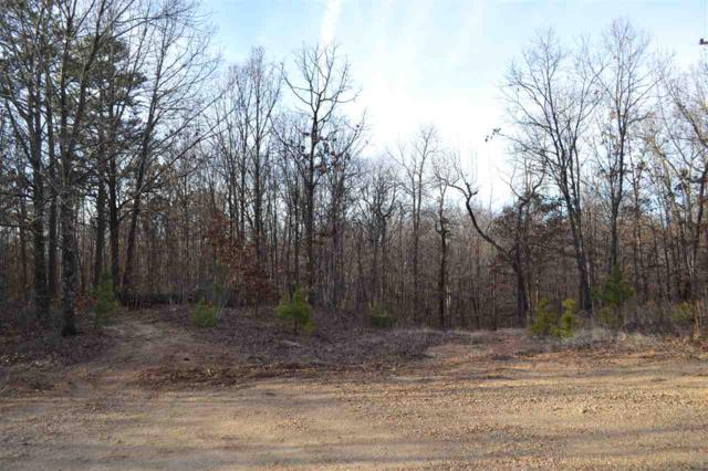 11 acres Oak Creek, Harrisburg, AR 72432 (MLS #10081107) :: Halsey Thrasher Harpole Real Estate Group