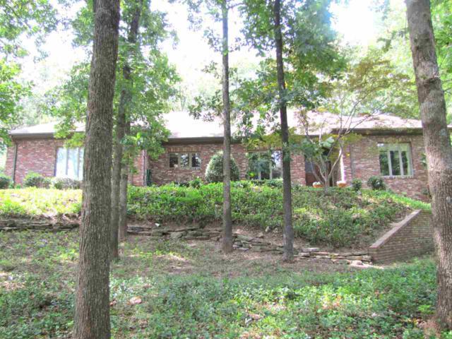 2800 Windover Cove, Jonesboro, AR 72401 (MLS #10081321) :: Halsey Thrasher Harpole Real Estate Group