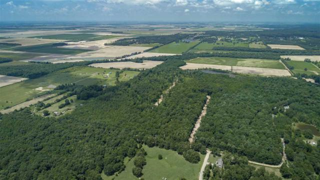 46.32 Acres Cr 160, Jonesboro, AR 72404 (MLS #10081450) :: Halsey Thrasher Harpole Real Estate Group