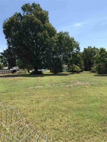1113 Rector Road, Paragould, AR 72450 (MLS #10082114) :: Halsey Thrasher Harpole Real Estate Group