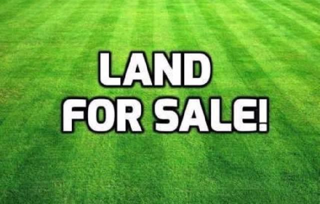 74.5 Acres Greensboro Road, Jonesboro, AR 72401 (MLS #10082303) :: Halsey Thrasher Harpole Real Estate Group