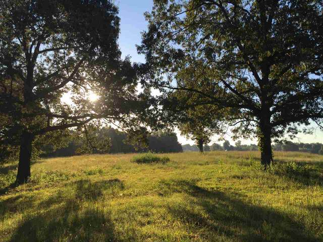 LOT 6 The Woodlands At Terra Hills, Jonesboro, AR 72401 (MLS #10085939) :: Halsey Thrasher Harpole Real Estate Group
