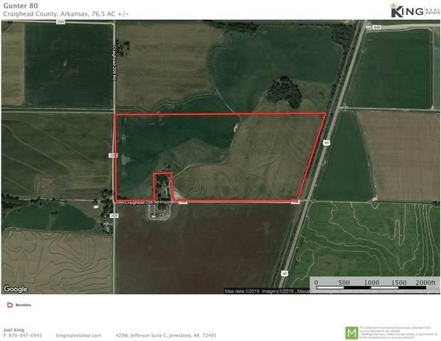 80 +/- acres Cr 206, Otwell, AR 72455 (MLS #10086035) :: Halsey Thrasher Harpole Real Estate Group