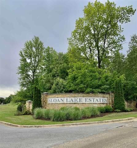 Lot 58 Lakeside Cove, Jonesboro, AR 72404 (MLS #10086600) :: Halsey Thrasher Harpole Real Estate Group