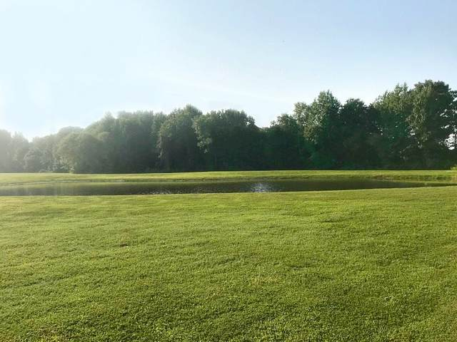 Lot 6 Amesley Manor, Jonesboro, AR 72401 (MLS #10086778) :: Halsey Thrasher Harpole Real Estate Group