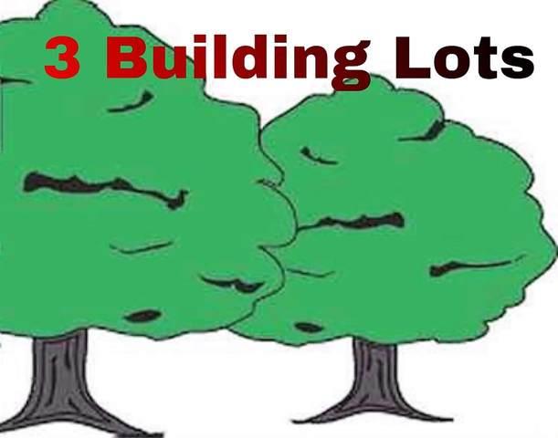 3 Lots Lakewood Addition, Hardy, AR 72542 (MLS #10087017) :: Halsey Thrasher Harpole Real Estate Group