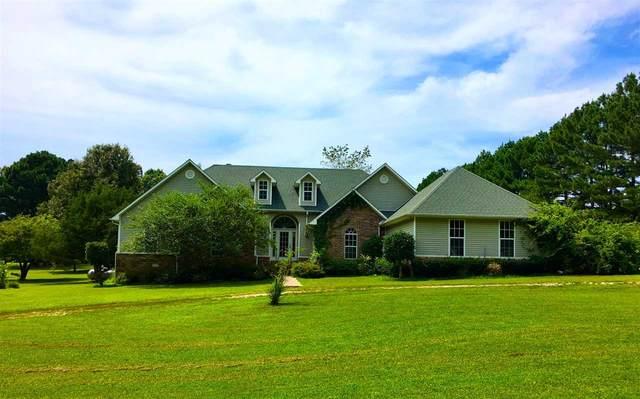 256 Concord Trail, Pocahontas, AR 72455 (MLS #10087523) :: Halsey Thrasher Harpole Real Estate Group