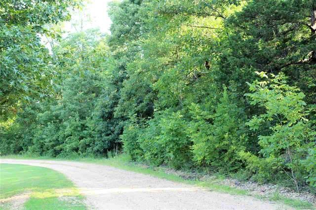 8 Acres Greene Road 560, Paragould, AR 72450 (MLS #10087813) :: Halsey Thrasher Harpole Real Estate Group
