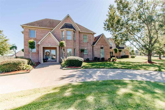3120 Southern Hills Lane, Jonesboro, AR 72405 (MLS #10089125) :: Halsey Thrasher Harpole Real Estate Group
