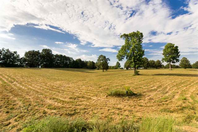 Lot 1 Terra Hills Phase V, Jonesboro, AR 72405 (MLS #10089270) :: Halsey Thrasher Harpole Real Estate Group