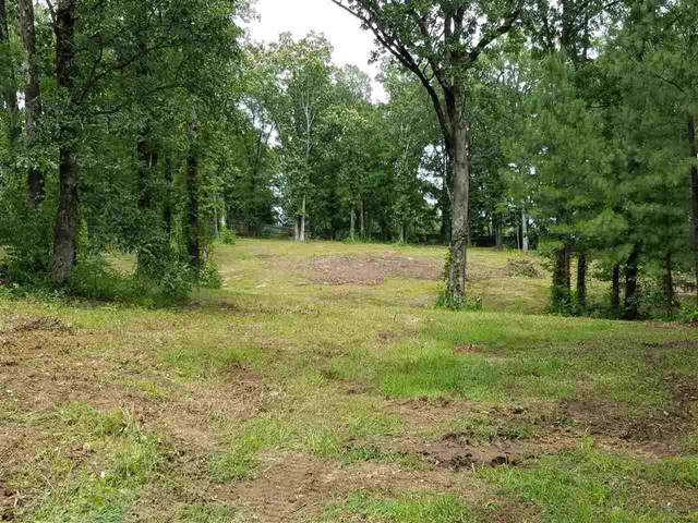 1207 Stone Creek Lane, Jonesboro, AR 72401 (MLS #10089272) :: Halsey Thrasher Harpole Real Estate Group