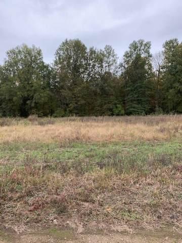 Lot 10 Schaeffer's Eddy Estates, Pocahontas, AR 72455 (MLS #10089566) :: Halsey Thrasher Harpole Real Estate Group