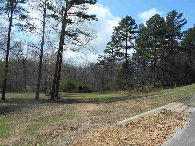 LOT 3 Oak Creek Ln, Harrisburg, AR 72432 (MLS #10089637) :: Halsey Thrasher Harpole Real Estate Group