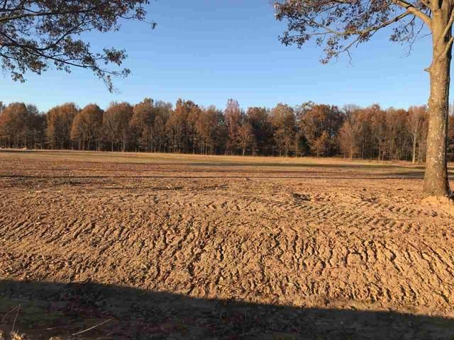 454 Cr 414, Jonesboro, AR 72404 (MLS #10090245) :: Halsey Thrasher Harpole Real Estate Group