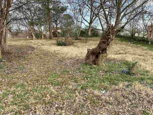 324 Drake, Jonesboro, AR 72401 (MLS #10090659) :: Halsey Thrasher Harpole Real Estate Group