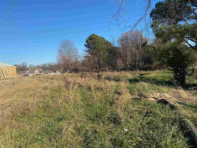lot 14 Silo Ridge Est, Paragould, AR 72450 (MLS #10092136) :: Halsey Thrasher Harpole Real Estate Group