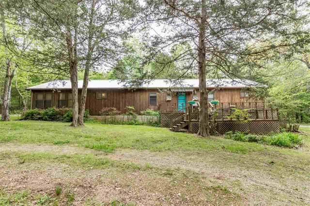 101 Hebron Drive, Hardy, AR 72542 (MLS #10093000) :: Halsey Thrasher Harpole Real Estate Group