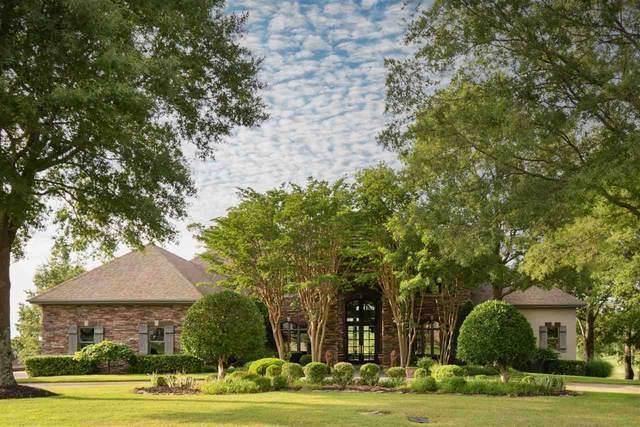 3604 Lacoste, Jonesboro, AR 72404 (MLS #10093729) :: Halsey Thrasher Harpole Real Estate Group
