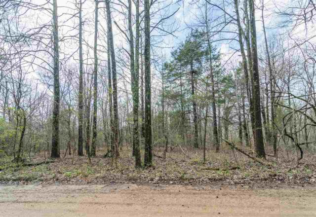 10 acres Cr 331, Bono, AR 72416 (MLS #10073889) :: REMAX Real Estate Centre