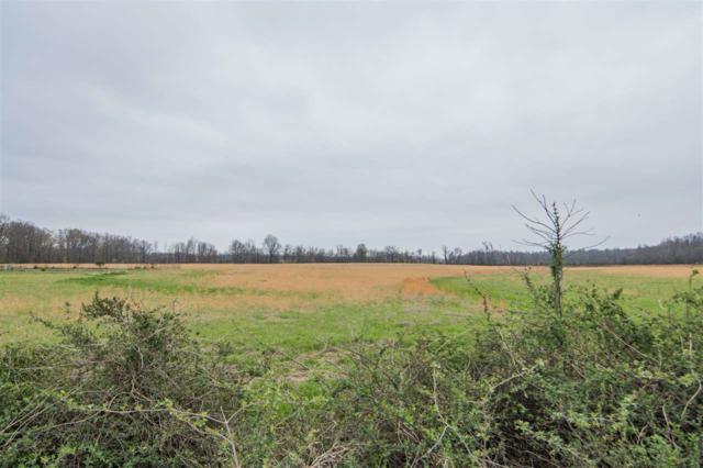 1323 Cr 304, Jonesboro, AR 72401 (MLS #10074039) :: REMAX Real Estate Centre