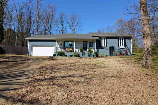 2911 Turtle Creek Cove, Jonesboro, AR 72404 (MLS #10074306) :: REMAX Real Estate Centre