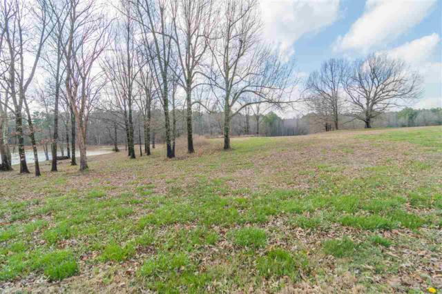 Lot 8 Bella Ridge Subdivision, Jonesboro, AR 72401 (MLS #10074832) :: Halsey Thrasher Harpole Real Estate Group