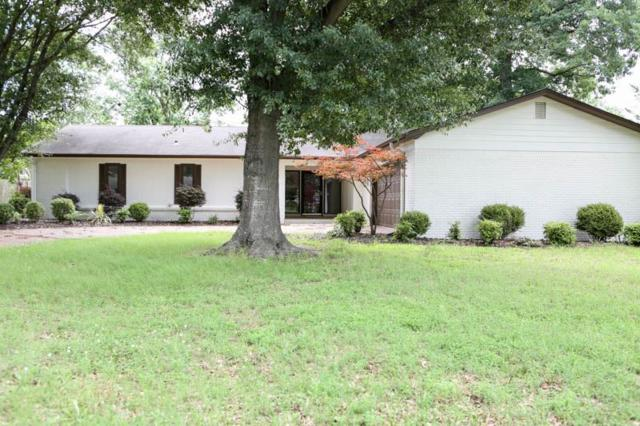 3004 Greenbriar Drive, Jonesboro, AR 72401 (MLS #10075059) :: REMAX Real Estate Centre