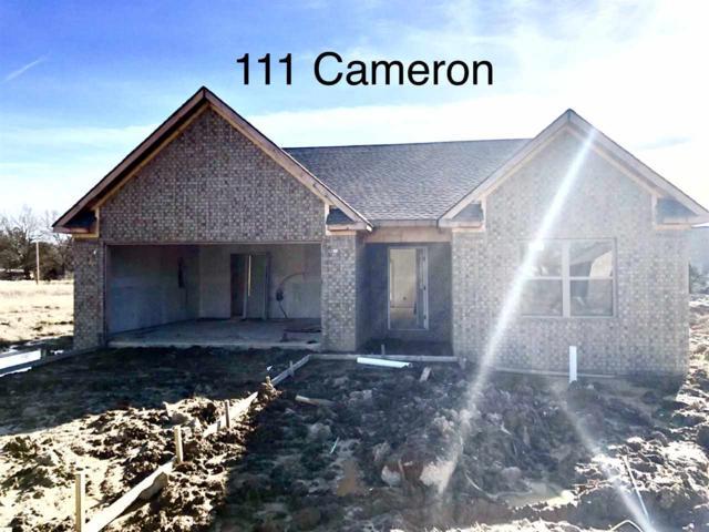 111 Cameron, Brookland, AR 72417 (MLS #10077703) :: Halsey Thrasher Harpole Real Estate Group