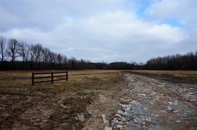 668 Cr 304, Jonesboro, AR 72401 (MLS #10078519) :: Halsey Thrasher Harpole Real Estate Group