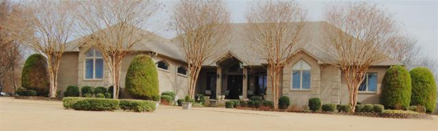 2902 Ridgepointe Drive, Jonesboro, AR 72404 (MLS #10079203) :: Halsey Thrasher Harpole Real Estate Group