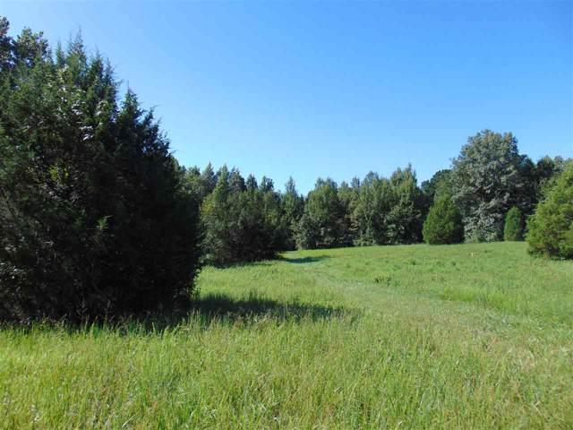 CR 714 8.36 Acres, Jonesboro, AR 72401 (MLS #10082446) :: Halsey Thrasher Harpole Real Estate Group