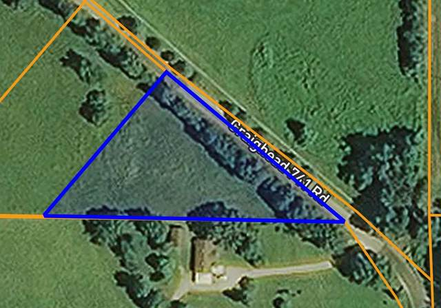 Cr 741, Brookland, AR 72415 (MLS #10085260) :: Halsey Thrasher Harpole Real Estate Group