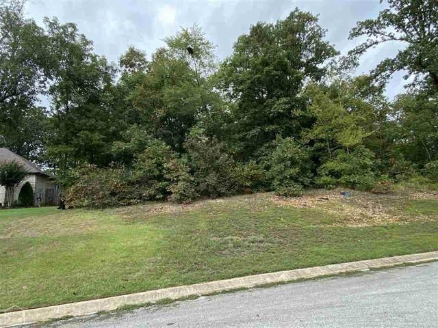 2312 Westminister Way, Jonesboro, AR 72404 (MLS #10091383) :: Halsey Thrasher Harpole Real Estate Group