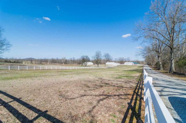 339 Township Rd, Pocahontas, AR 72455 (MLS #10073811) :: REMAX Real Estate Centre