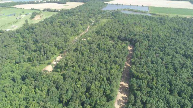 46.32 acres Cr 160, Jonesboro, AR 72404 (MLS #10073827) :: REMAX Real Estate Centre